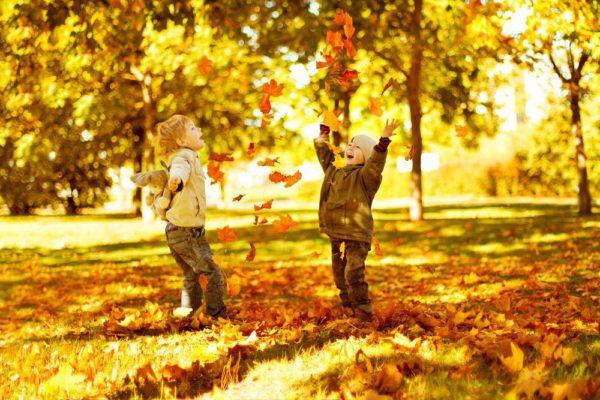mùa thu vàng